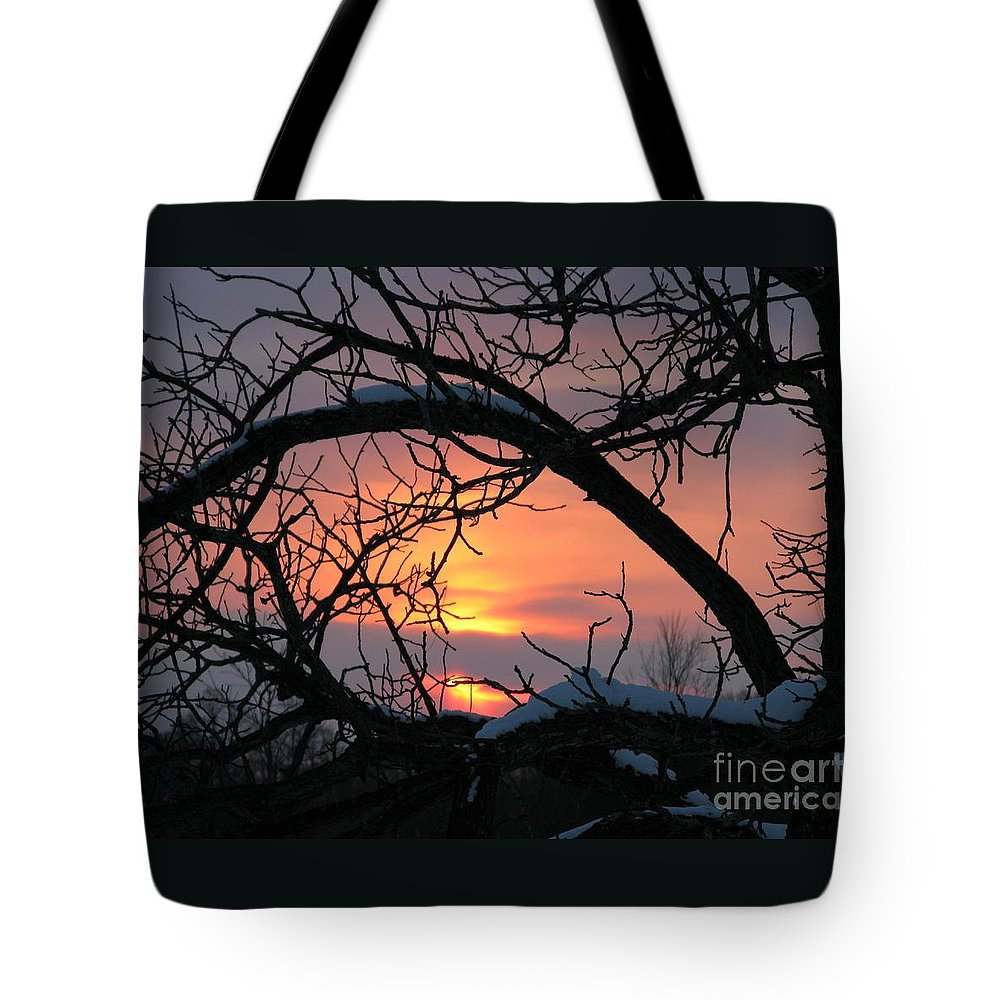 Sunset Tote Bag featuring the photograph As A Bird Sees by Ann Horn