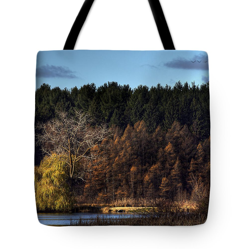 Fall Tote Bag featuring the photograph As Seen In A Dream by Thomas Young