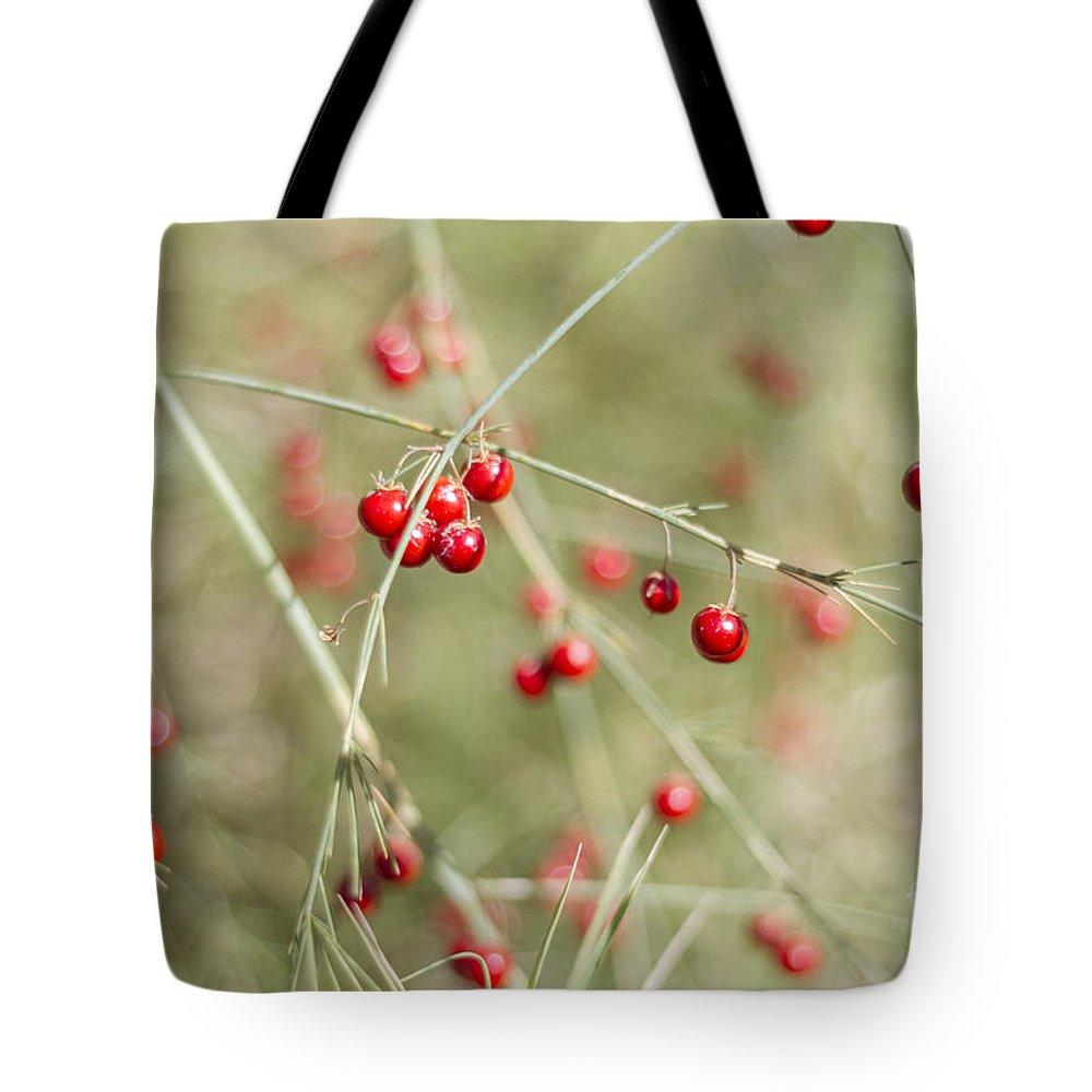 Asparagus Tote Bag featuring the photograph Asparagus Bokeh by Elaine Teague