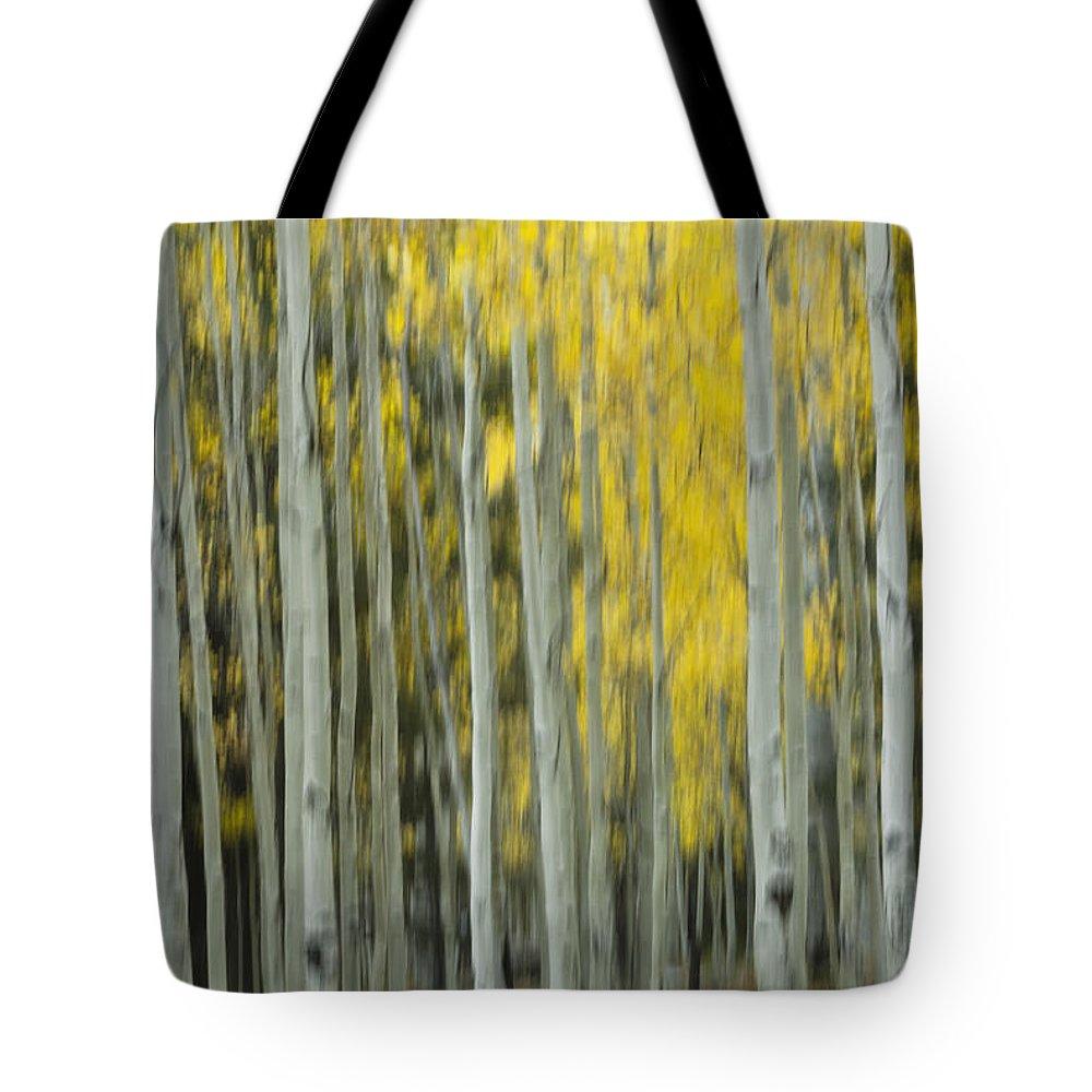Aspen Trees Tote Bag featuring the photograph Aspen Abstract by Saija Lehtonen