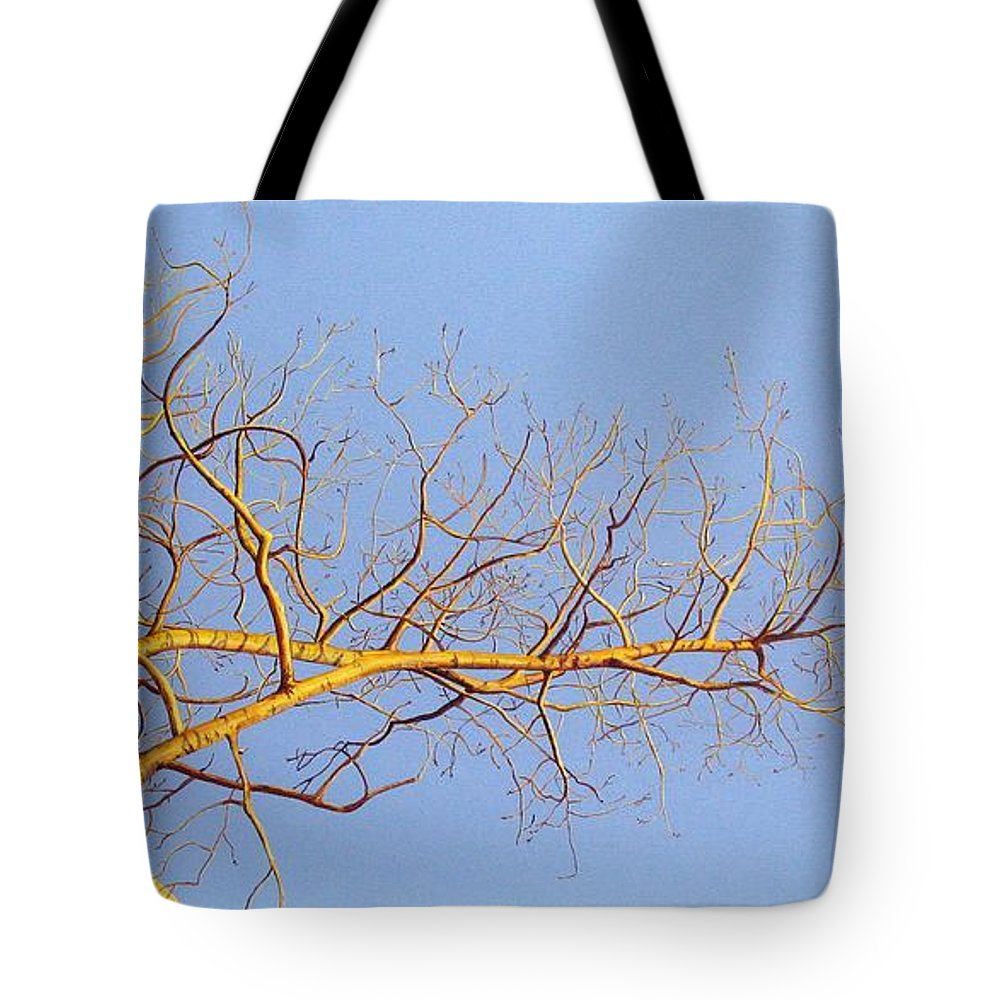 Aspen Painting Tote Bag featuring the painting Aspen In The Autumn Sun by Elaine Booth-Kallweit