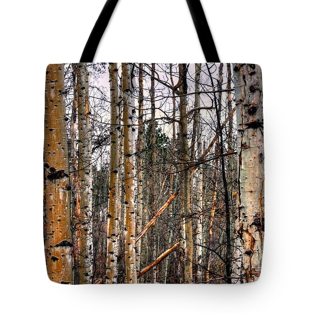 Forest Tote Bag featuring the photograph Aspen Patterns 14438 by Jerry Sodorff