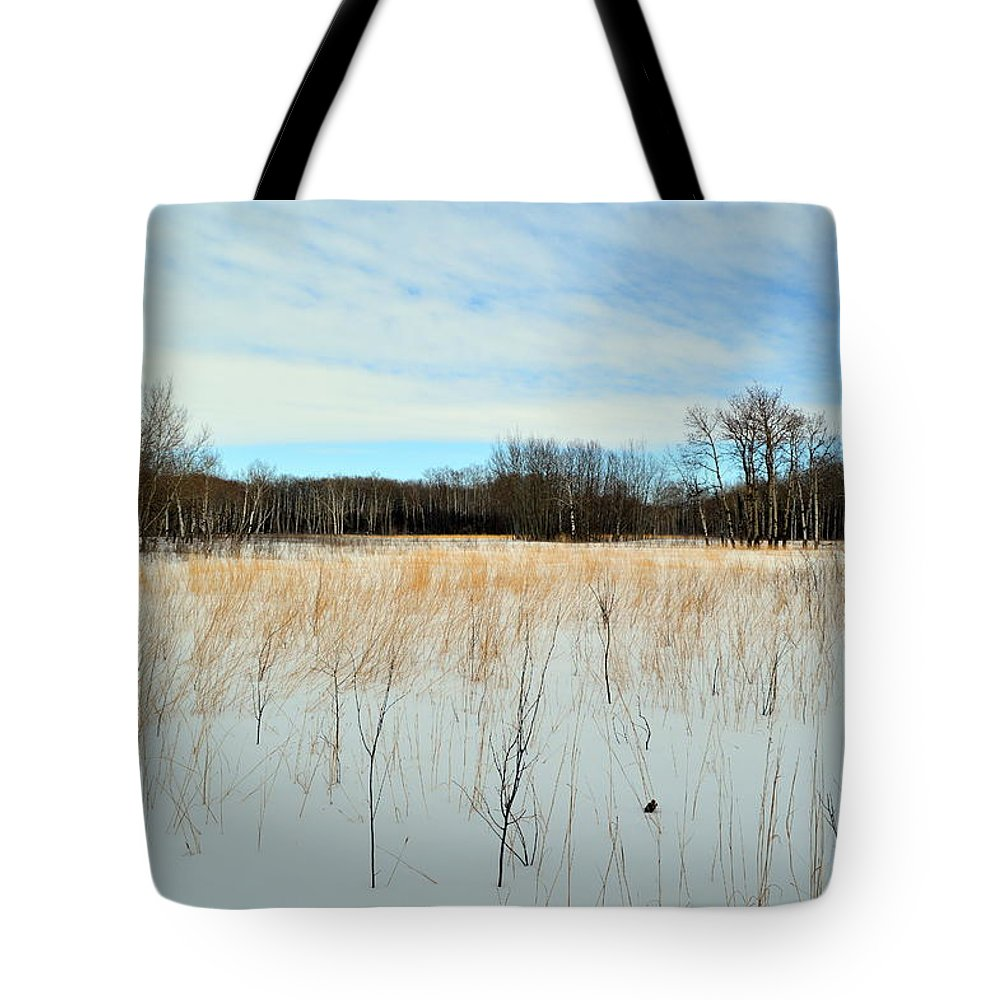 Natural History Area Tote Bag featuring the photograph Aspen Prairie 2 by Mark Hudon