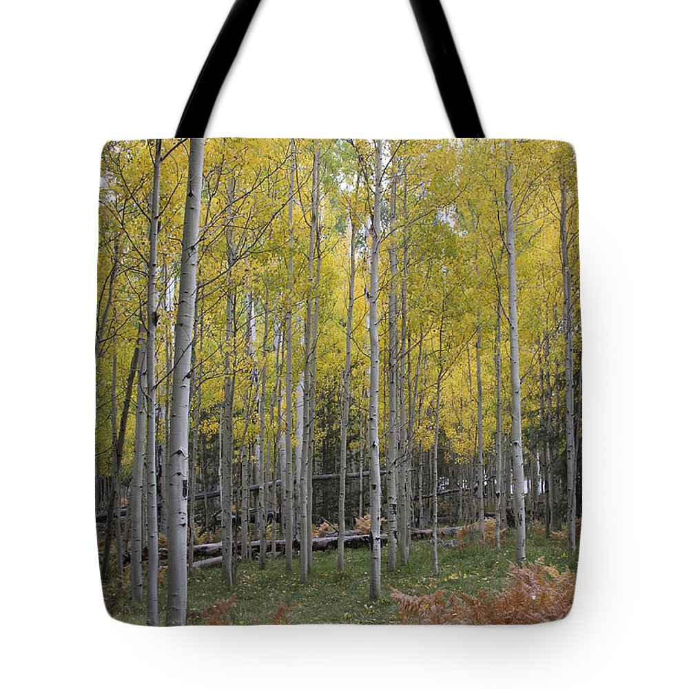 Aspen Tote Bag featuring the photograph Aspen's Yellow Glow by Ruth Jolly