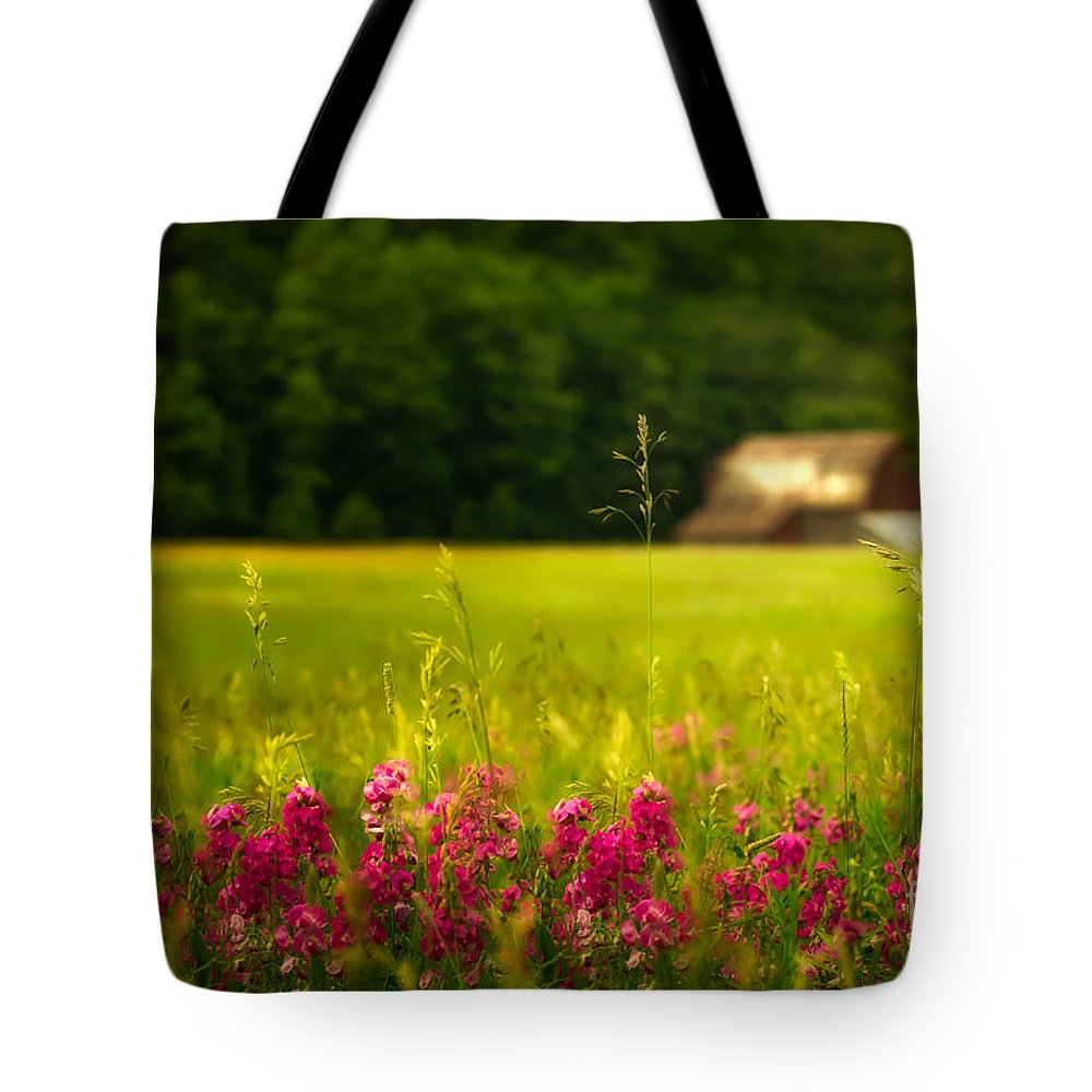 Barn Tote Bag featuring the photograph At A Distance by Todd Bielby