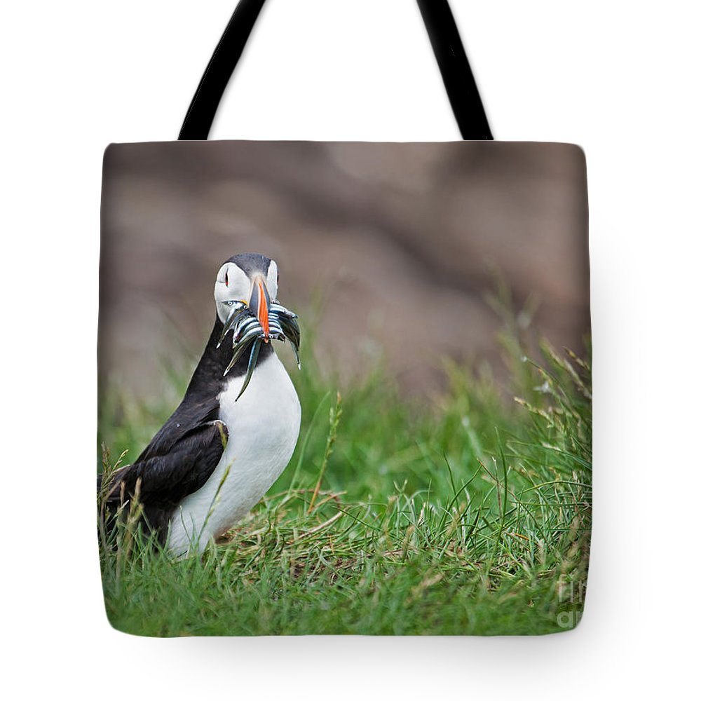 Atlantic Puffin Tote Bag featuring the photograph Atlantic Puffin With Sandeels by Liz Leyden