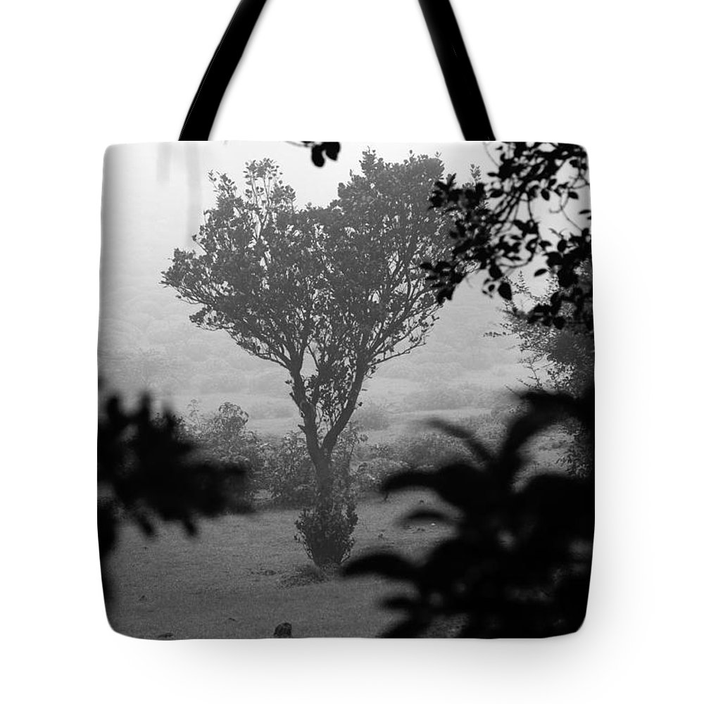 Landscape Tote Bag featuring the photograph Attached by Dattaram Gawade