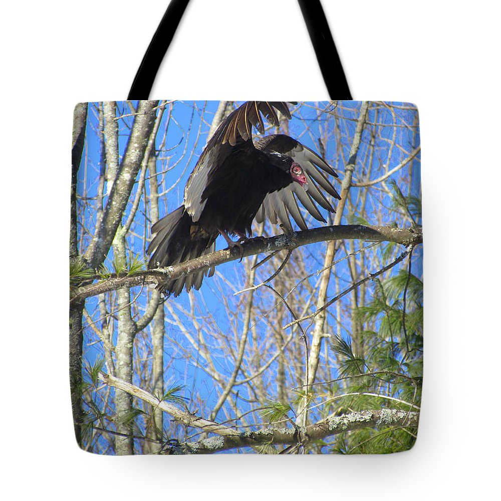 Turkey Vulture Tote Bag featuring the photograph Attack Of The Turkey Vulture by Elizabeth Dow