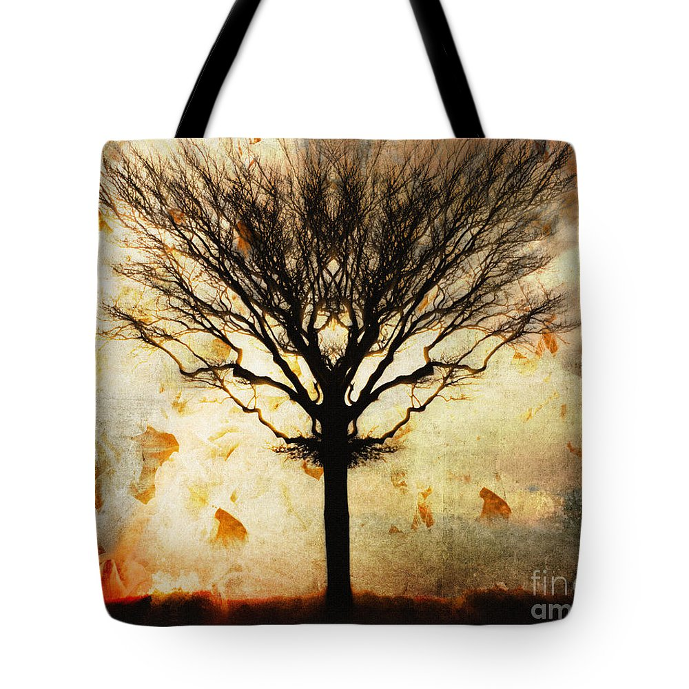 Nag004060 Tote Bag featuring the photograph Autum Wind by Edmund Nagele