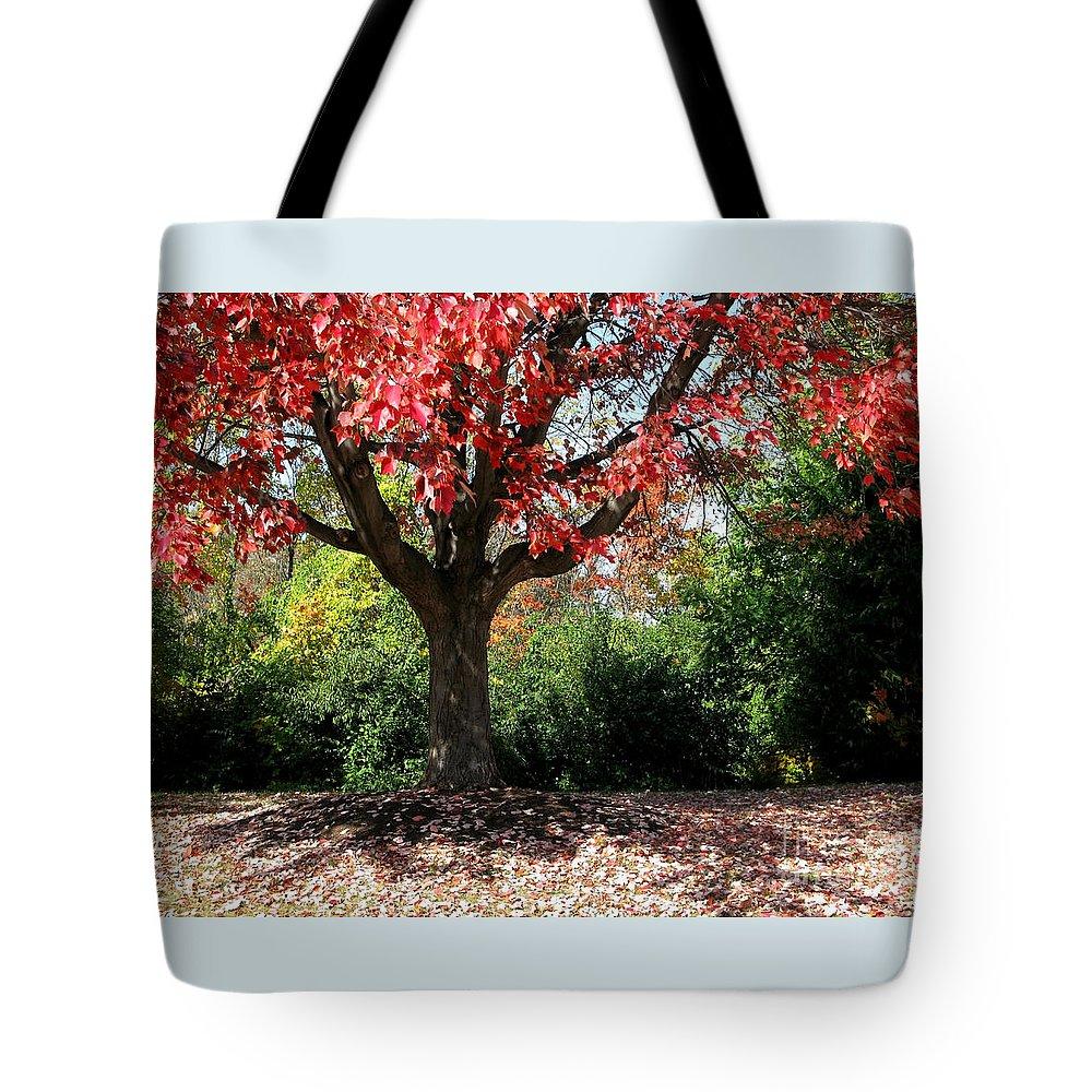 Autumn Tote Bag featuring the photograph Autumn Ablaze by Ann Horn