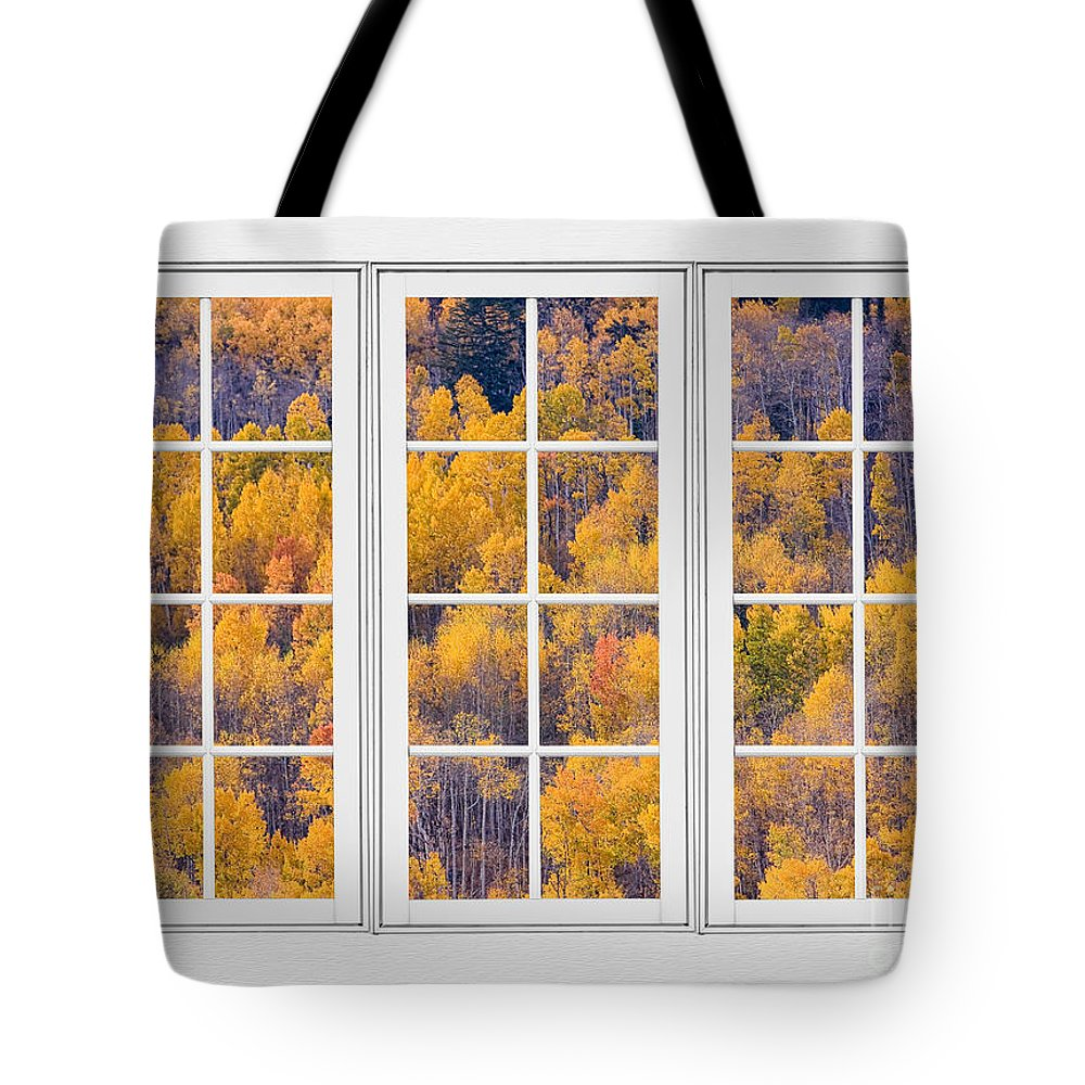 Aspen Tote Bag featuring the photograph Autumn Aspen Trees White Picture Window View by James BO Insogna