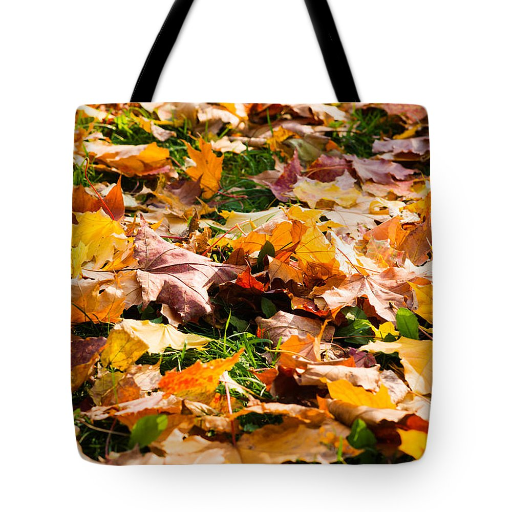 Abstract Tote Bag featuring the photograph Autumn Carpet by Alexander Senin