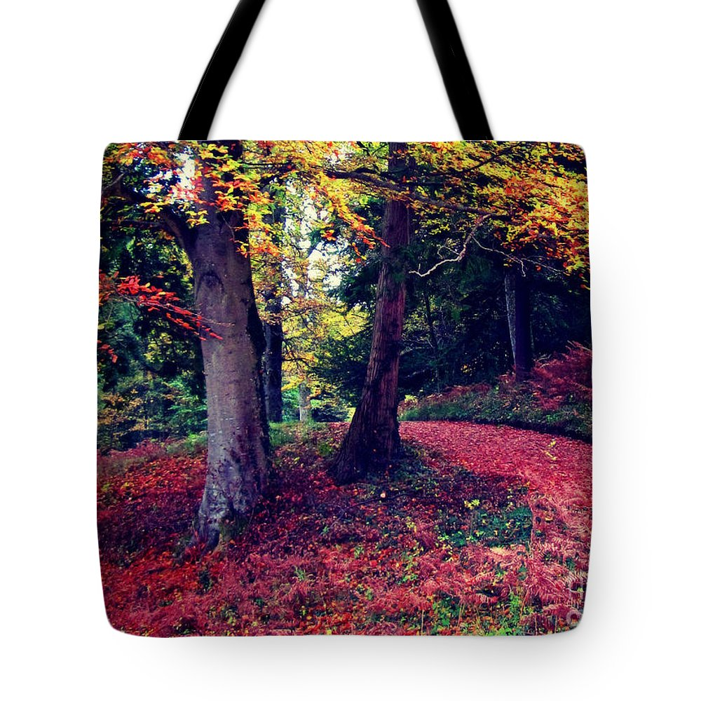 Woodland Tote Bag featuring the photograph Autumn Carpet In The Enchanted Wood by Callan Art