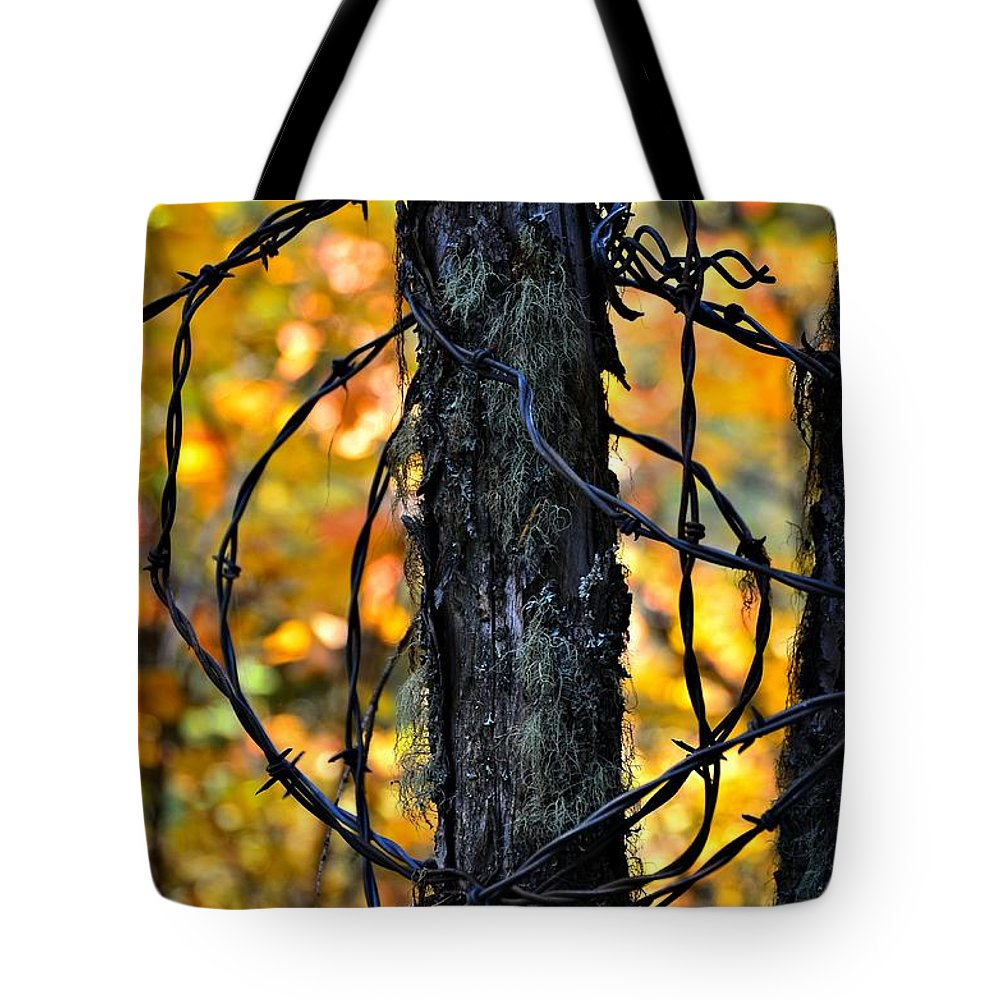 Abstract Tote Bag featuring the photograph Autumn Colors 1 by Newel Hunter