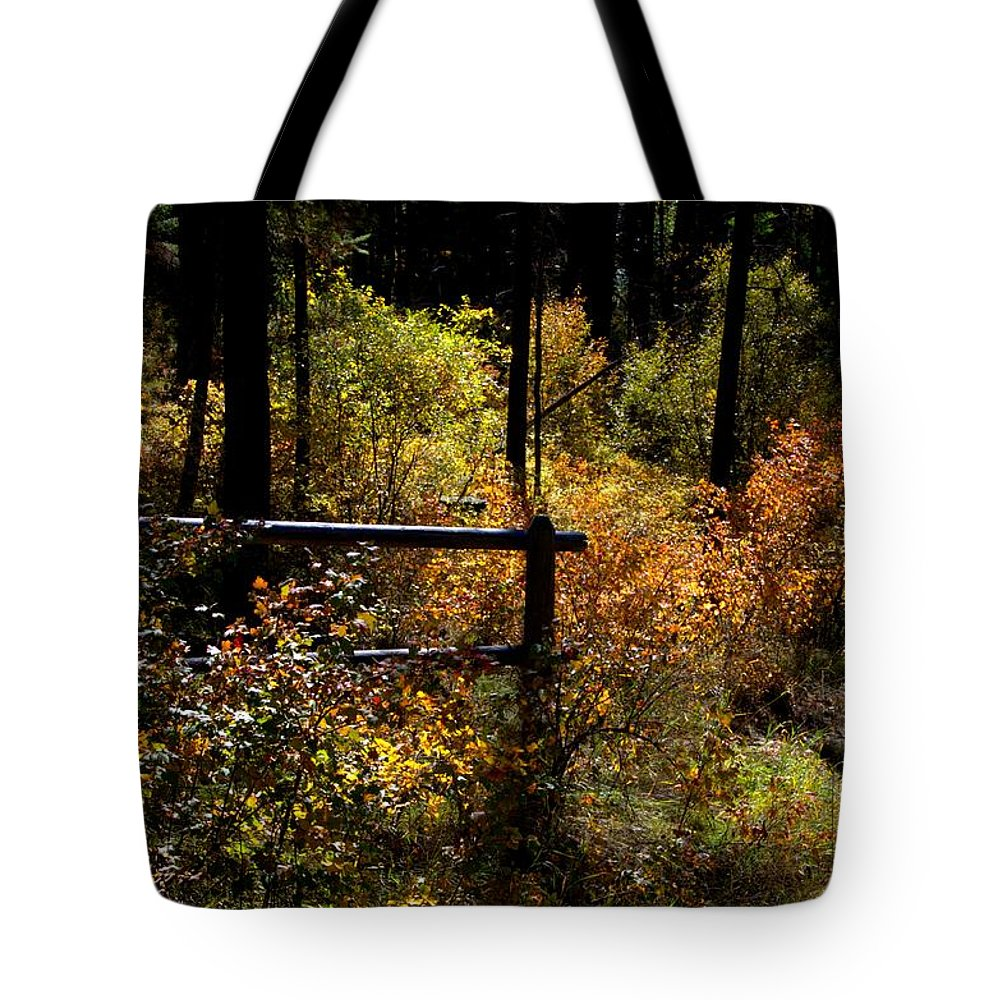 Abstract Tote Bag featuring the photograph Autumn Colors 3 by Newel Hunter