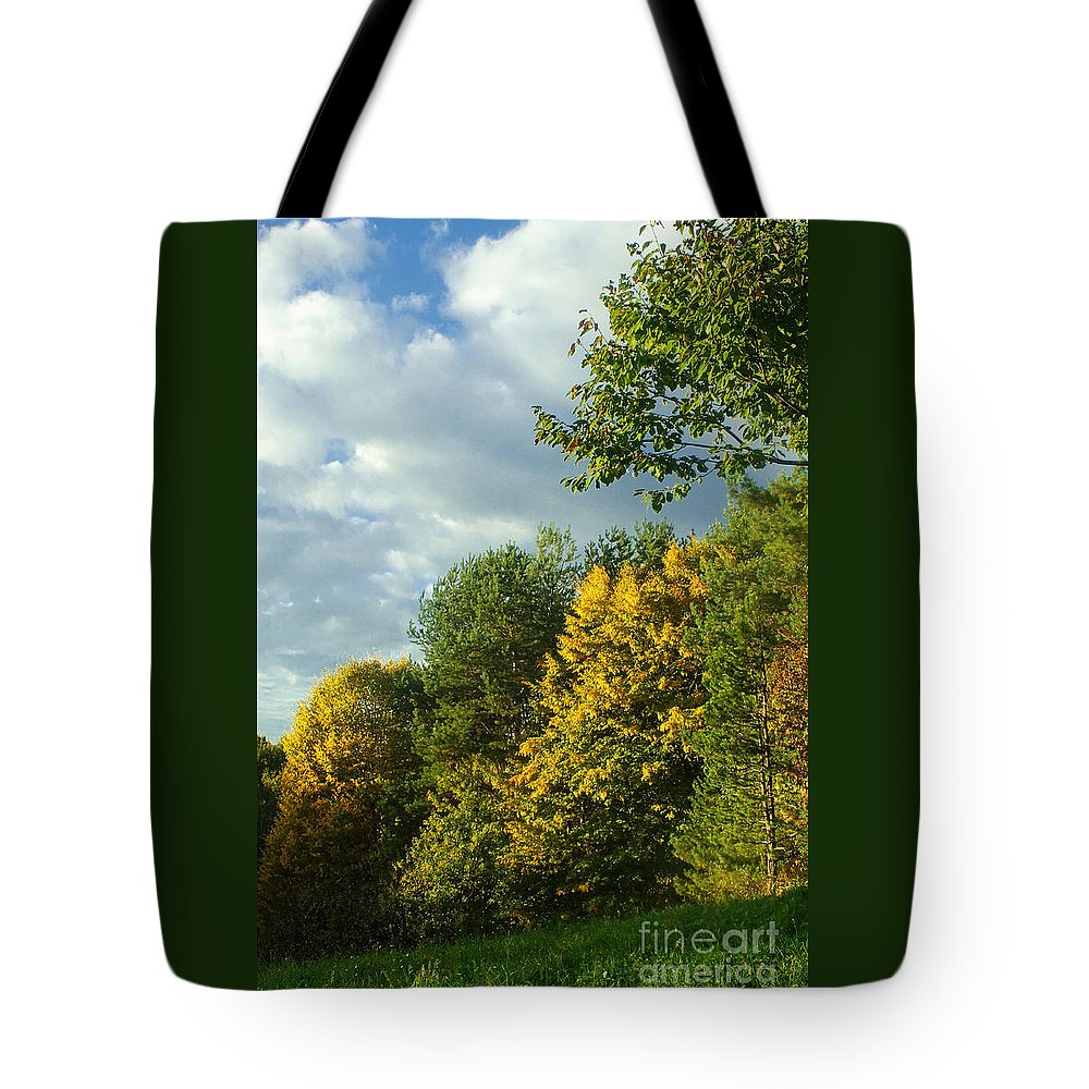 Nature Tote Bag featuring the photograph Autumn Colors 6 by Rudi Prott