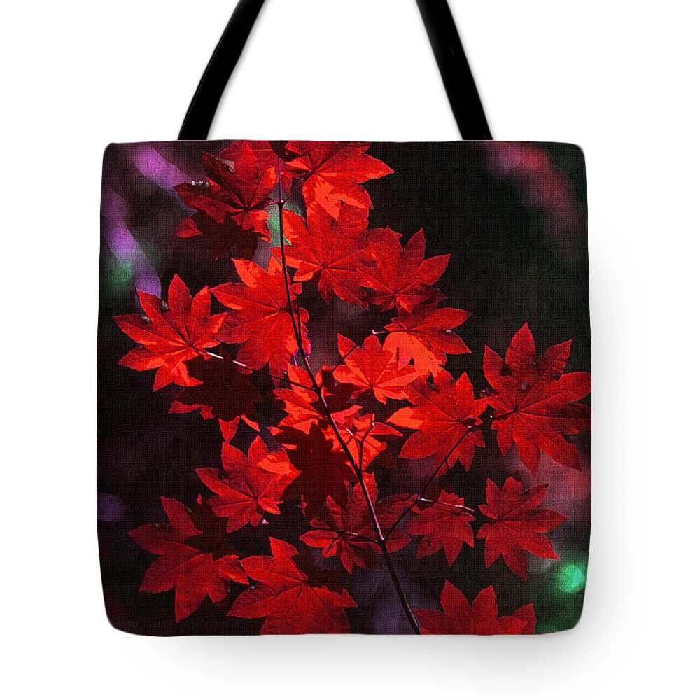 Autumn Colors Early Tote Bag featuring the photograph Autumn Colors Early by Tom Janca