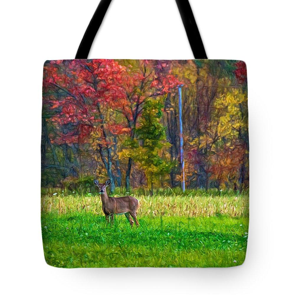 Steve Harrington Tote Bag featuring the photograph Autumn Doe - Paint by Steve Harrington