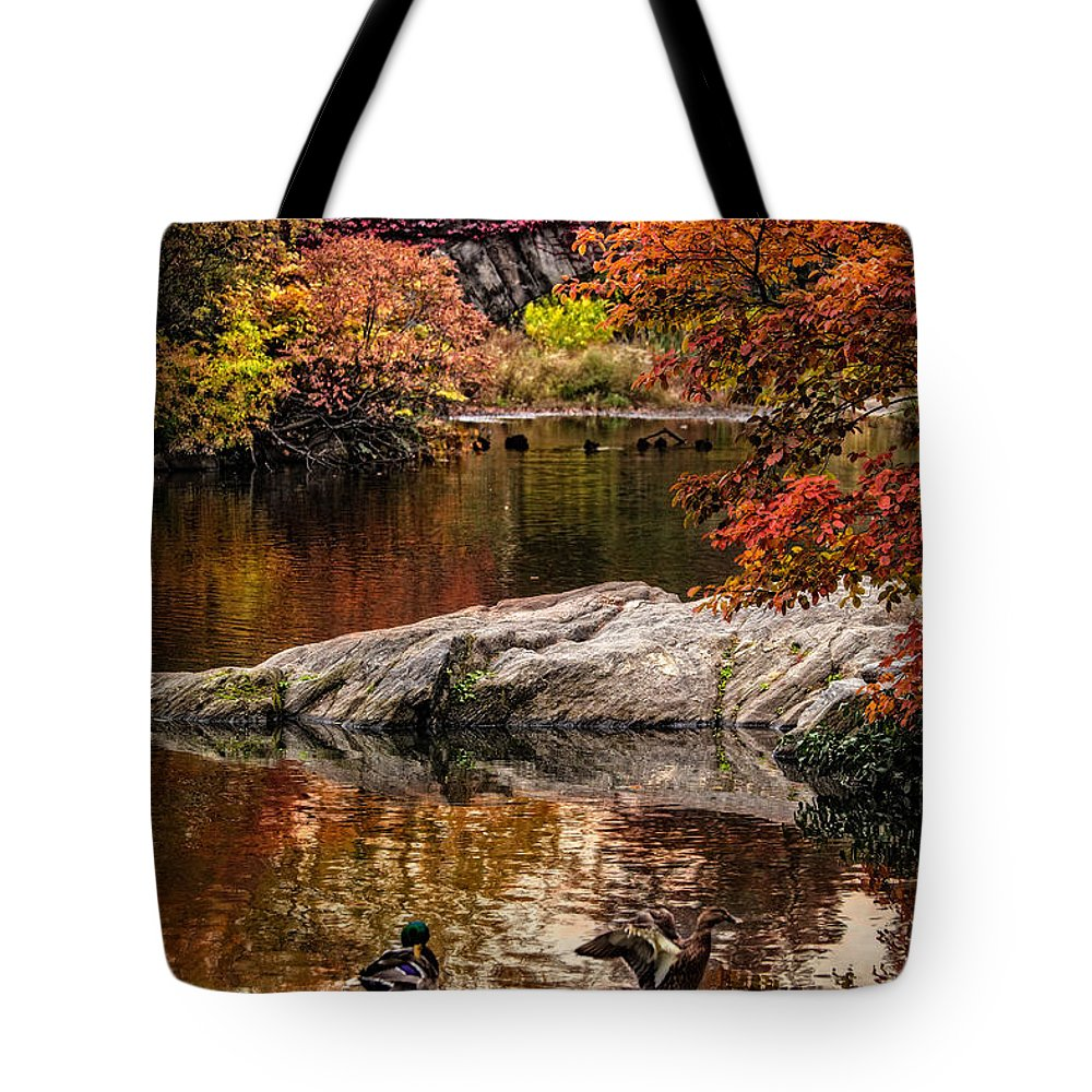 Central Park Tote Bag featuring the photograph Autumn Duck Couple by Chris Lord
