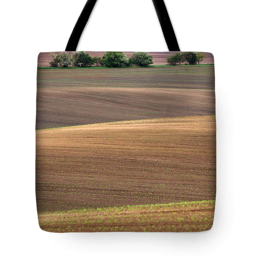 Landscape Tote Bag featuring the photograph Autumn Fields Of Moravia by Jaroslaw Blaminsky