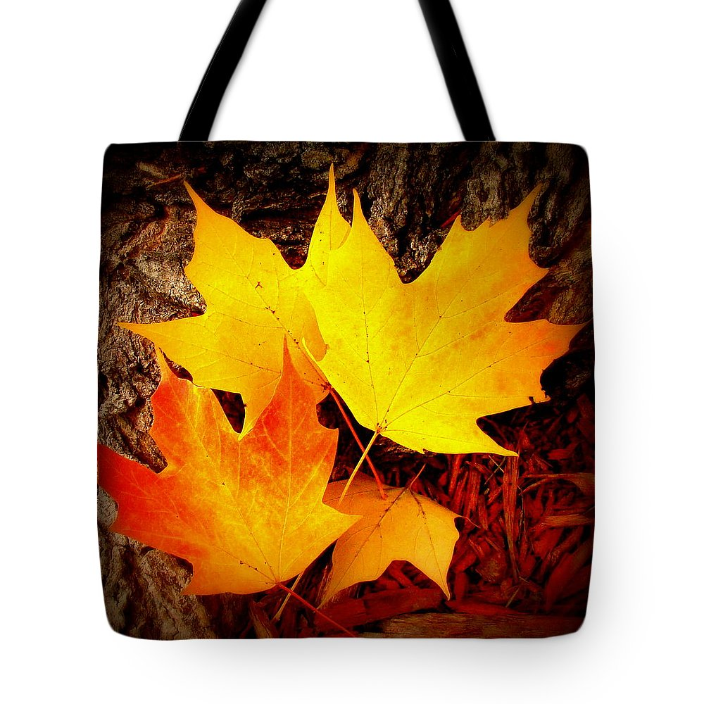 Fine Art Tote Bag featuring the photograph Autumn Fire by Rodney Lee Williams
