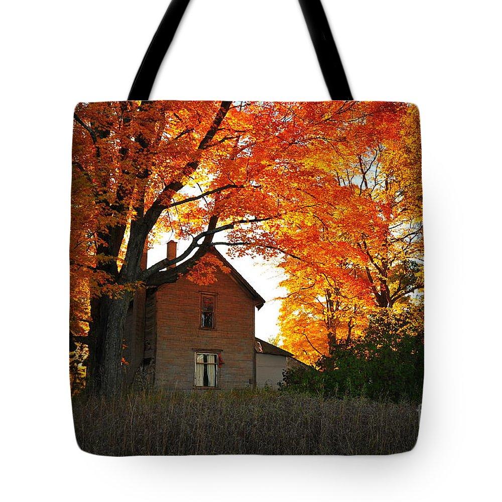 Autumn Tote Bag featuring the photograph Autumn Haunt by Terri Gostola