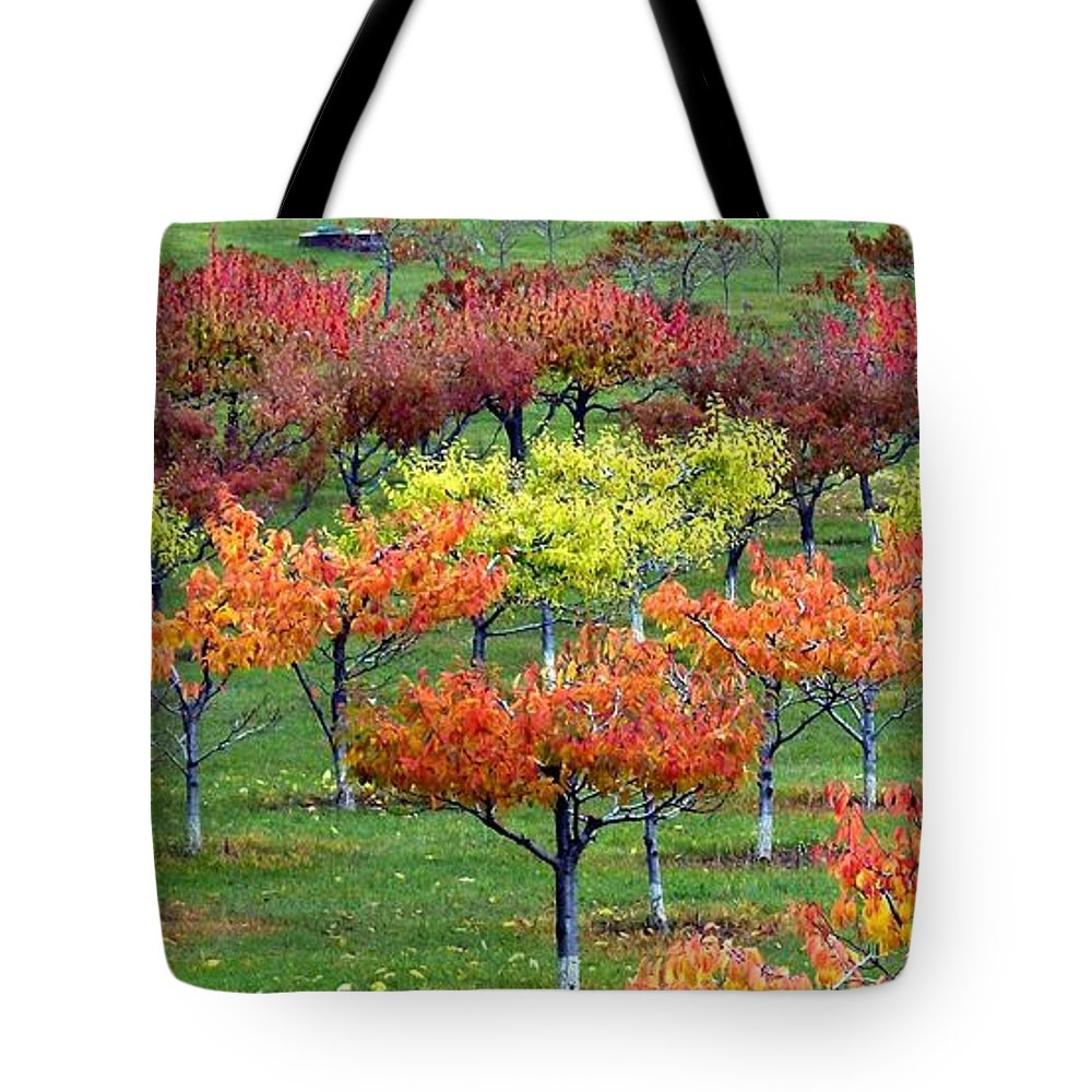 Orchard Tote Bag featuring the photograph Autumn Hillside Orchard by Will Borden