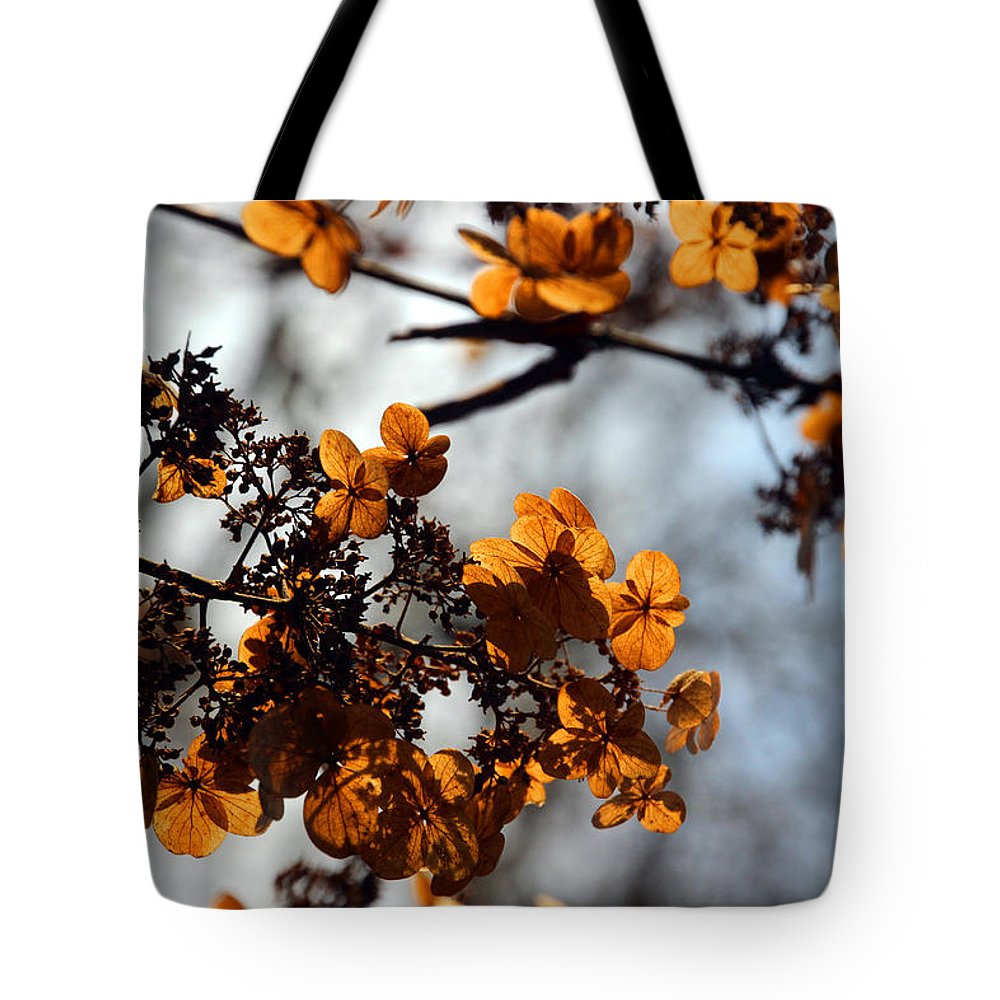 Flower Tote Bag featuring the photograph Tardiva Hydrangea by Carolyn Stagger Cokley