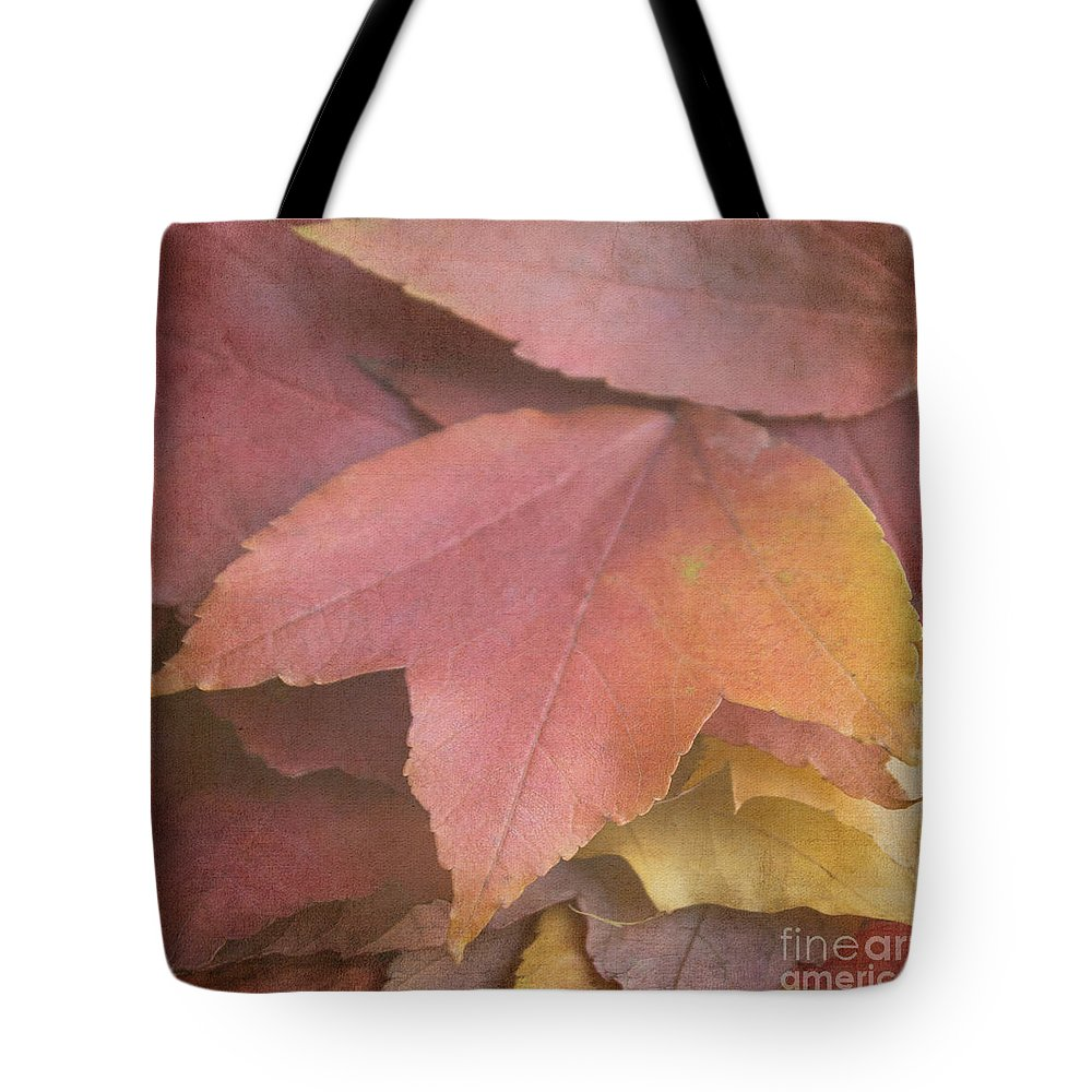 Autumn Tote Bag featuring the photograph Autumn In Textures by Arlene Carmel
