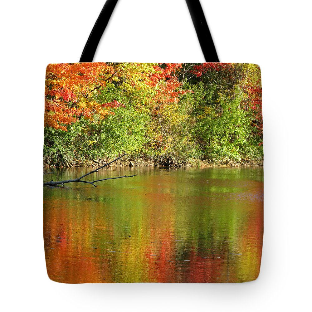 Autumn Tote Bag featuring the photograph Autumn Iridescence by Ann Horn