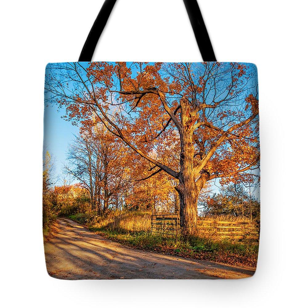 Steve Harrington Tote Bag featuring the photograph Autumn Lane by Steve Harrington
