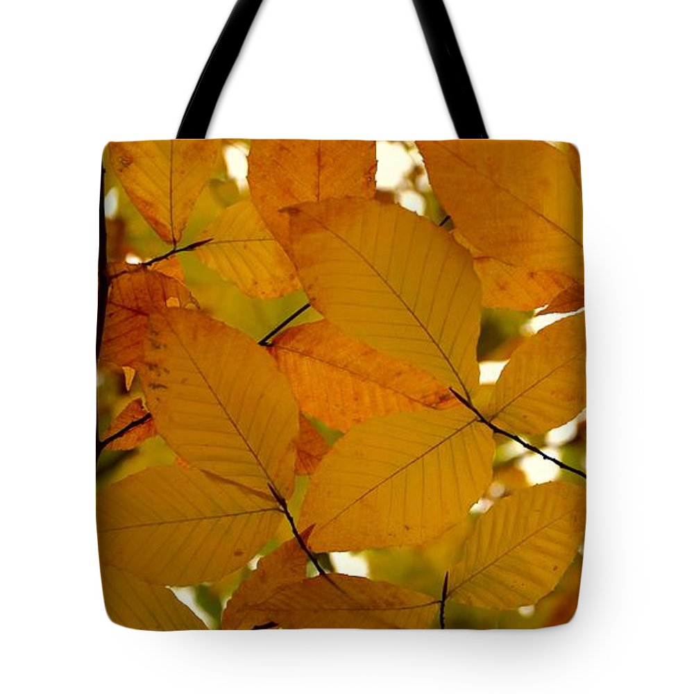 Autumn Tote Bag featuring the photograph Autumn Leaves by Corinne Rhode
