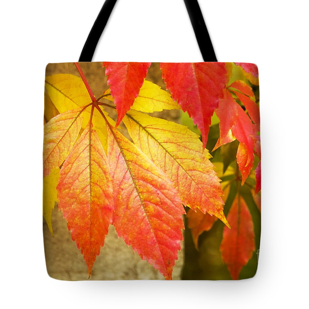 Heiko Tote Bag featuring the photograph Autumn Leaves by Heiko Koehrer-Wagner