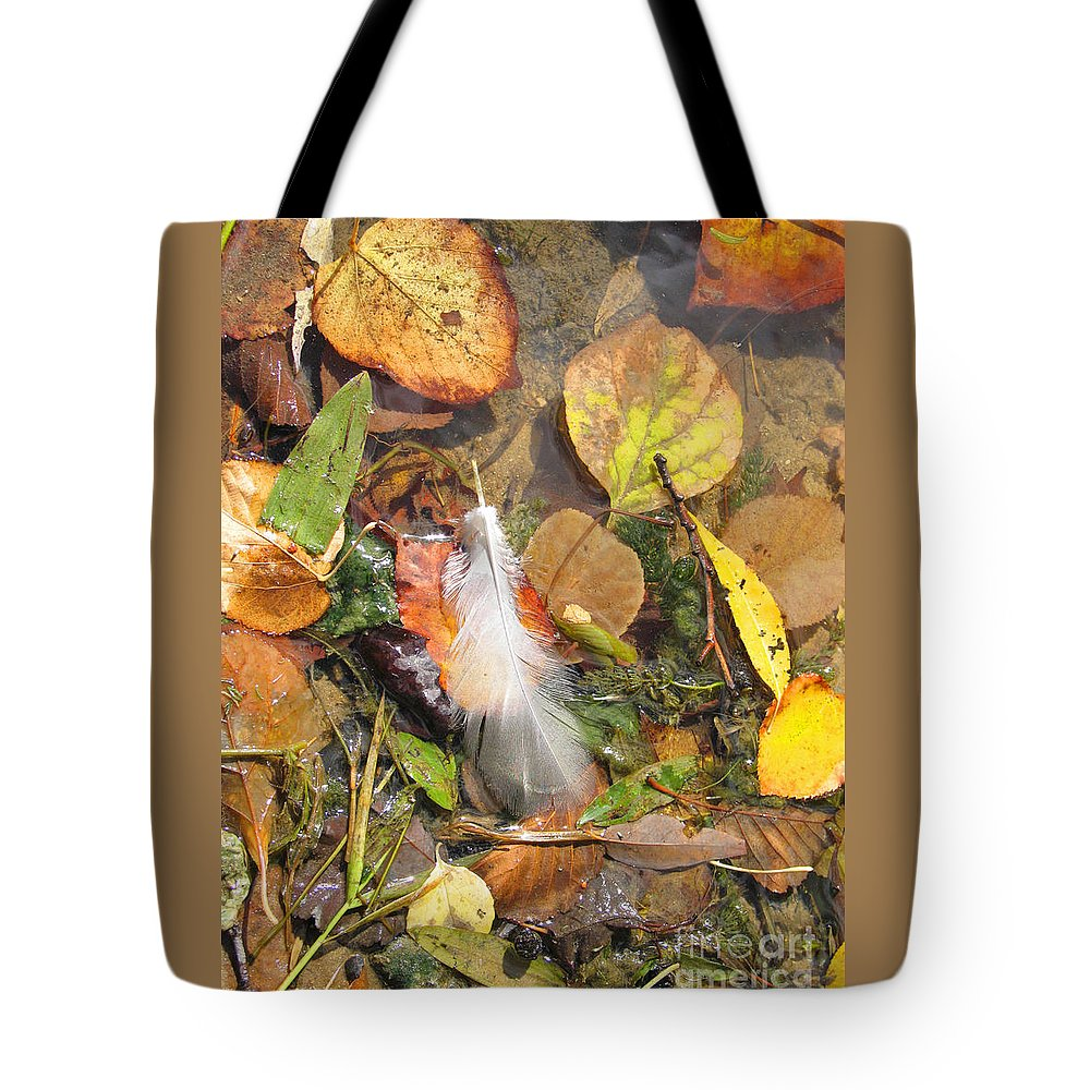 Autumn Tote Bag featuring the photograph Autumn Leavings by Ann Horn
