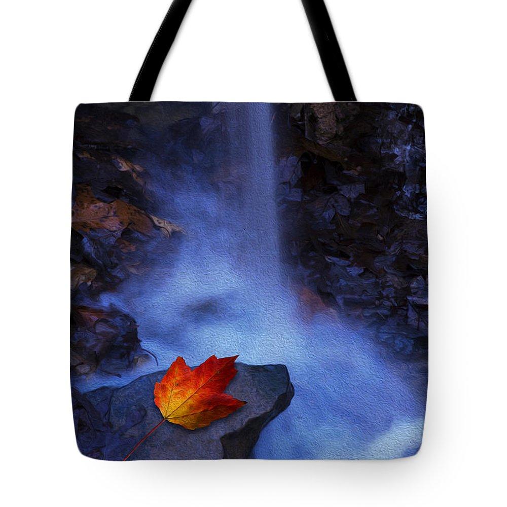 Ron Jones Tote Bag featuring the photograph Autumn Light by Ron Jones