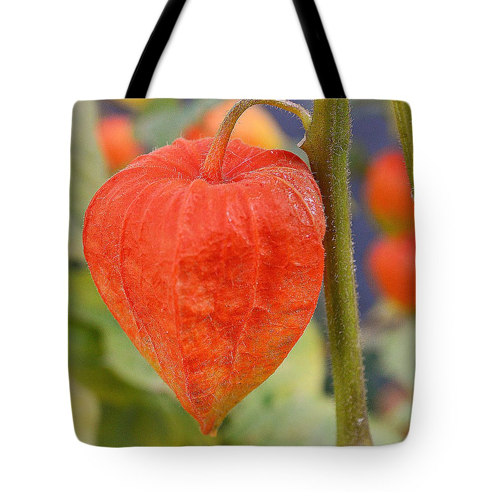 Orange Tote Bag featuring the photograph Autumn Light by Felicia Tica