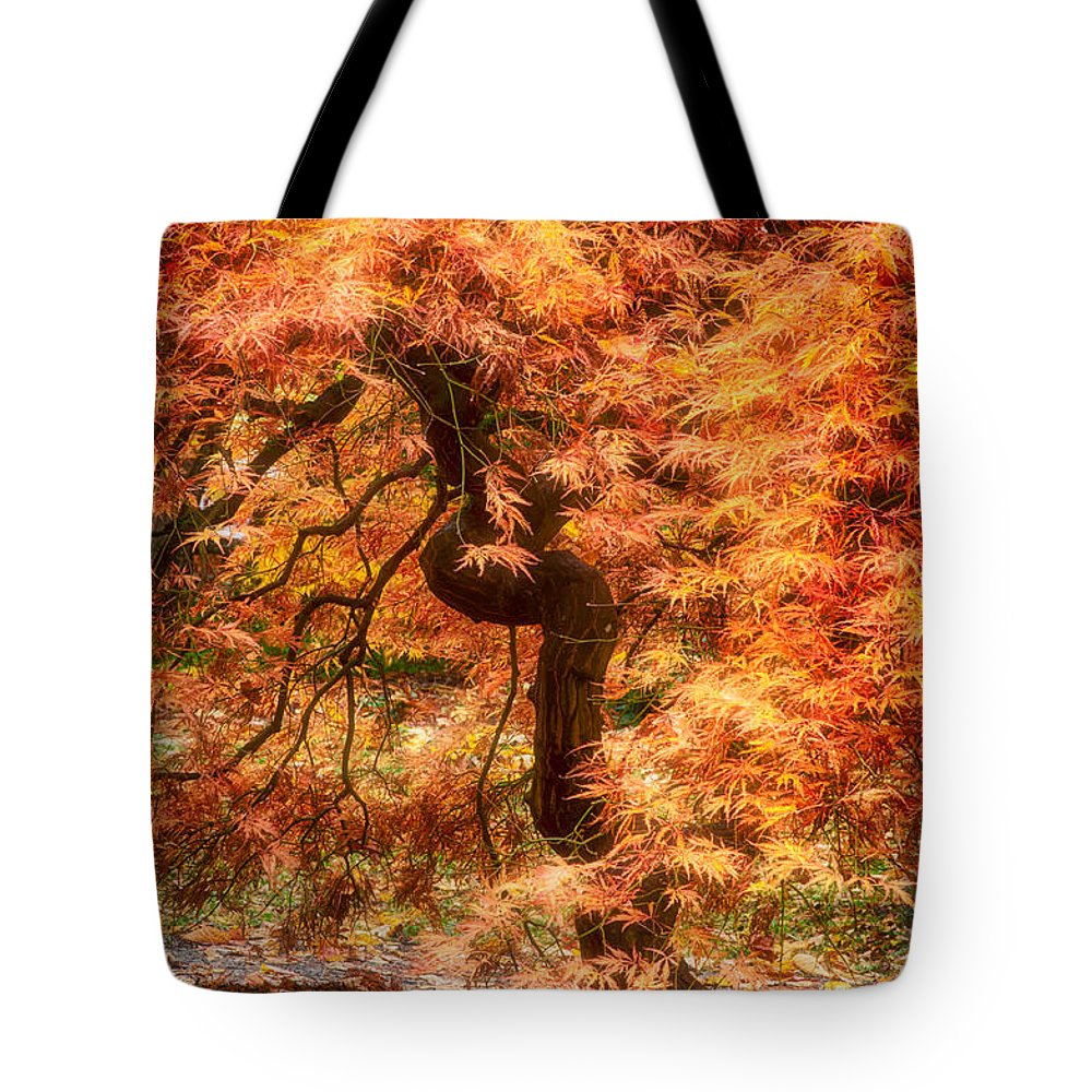 Maple Tote Bag featuring the photograph Autumn Maple by Bobbie Climer