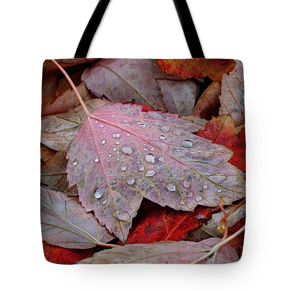 Autumn Tote Bag featuring the photograph Autumn Melange by Rona Black