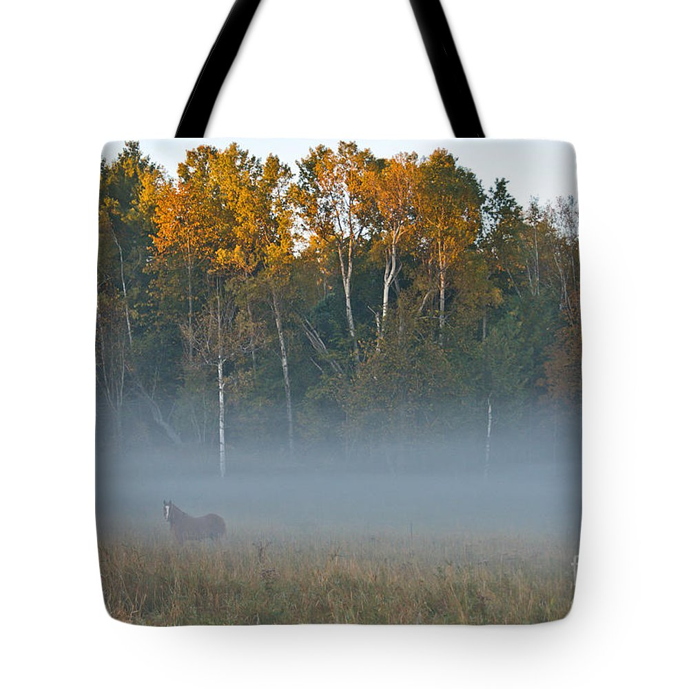 Tote Bag featuring the photograph Autumn Mist by Cheryl Baxter