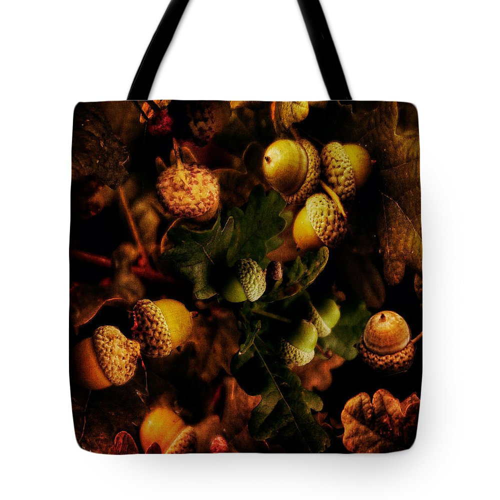 Acorn Tote Bag featuring the photograph Autumn Oak by Chris Lord