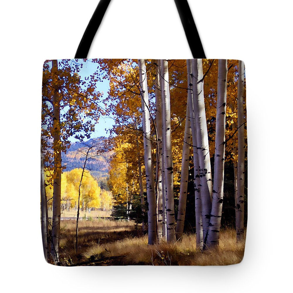Trees Tote Bag featuring the photograph Autumn Paint Chama New Mexico by Kurt Van Wagner