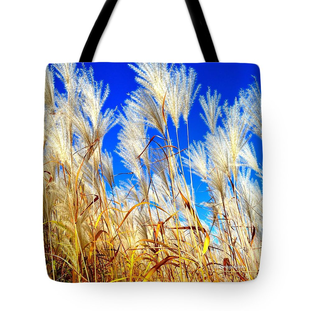 Pampas Tote Bag featuring the photograph Autumn Pampas by Susie Loechler