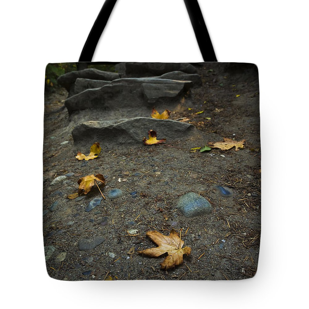 Autumn Tote Bag featuring the photograph Autumn Path by Priya Ghose