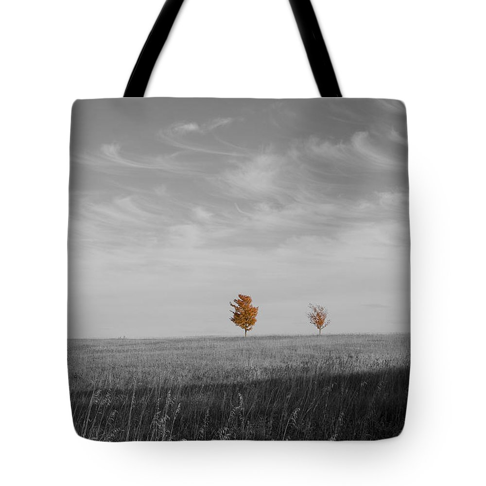 Unique Tote Bag featuring the photograph Autumn Prairie Trees by Dylan Punke