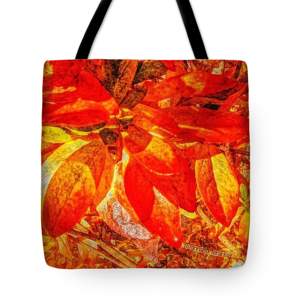 Autumn Rhododendron Leaves Tote Bag featuring the photograph Autumn Rhododendron Leaves Bright by Anna Porter