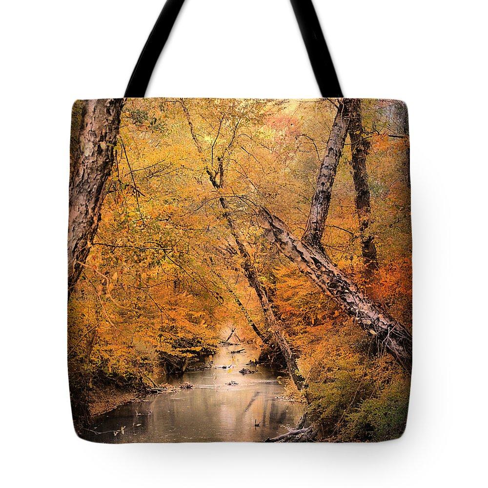 Autumn Tote Bag featuring the photograph Autumn Riches 1 by Jai Johnson