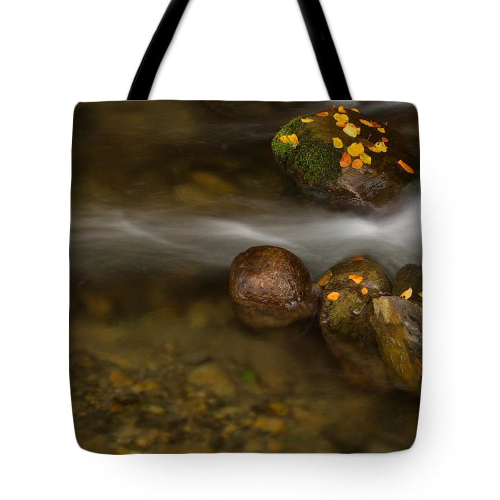 America Tote Bag featuring the photograph Autumn River by Mircea Costina Photography