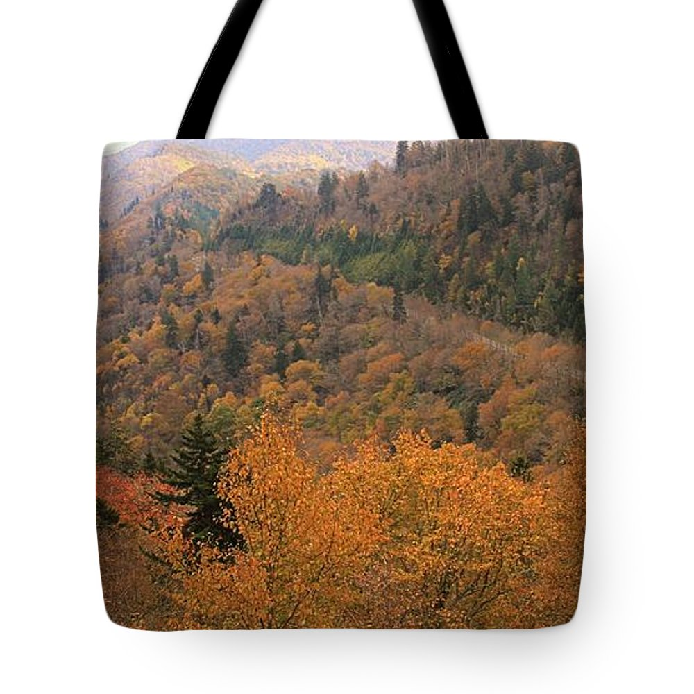 Autumn Roads Tote Bag featuring the photograph Autumn Roads by Dan Sproul