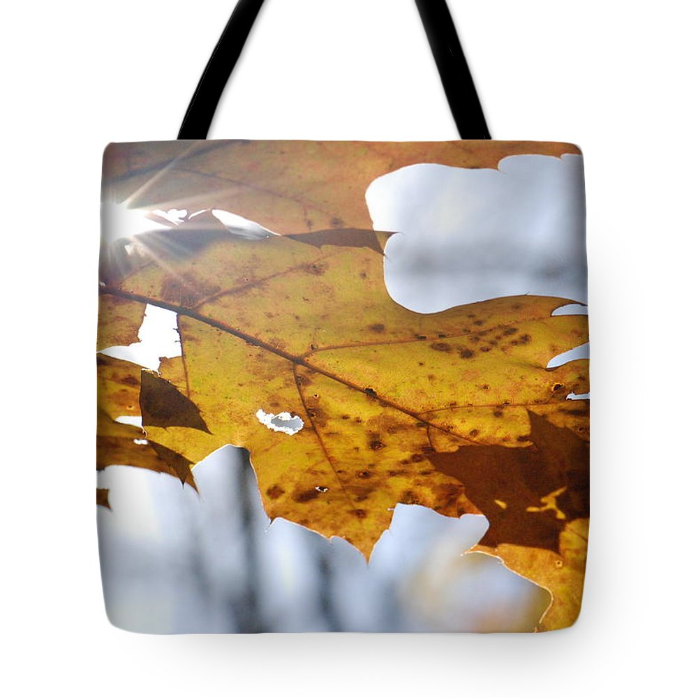 Sun Tote Bag featuring the photograph Autumn Star by Amy Porter
