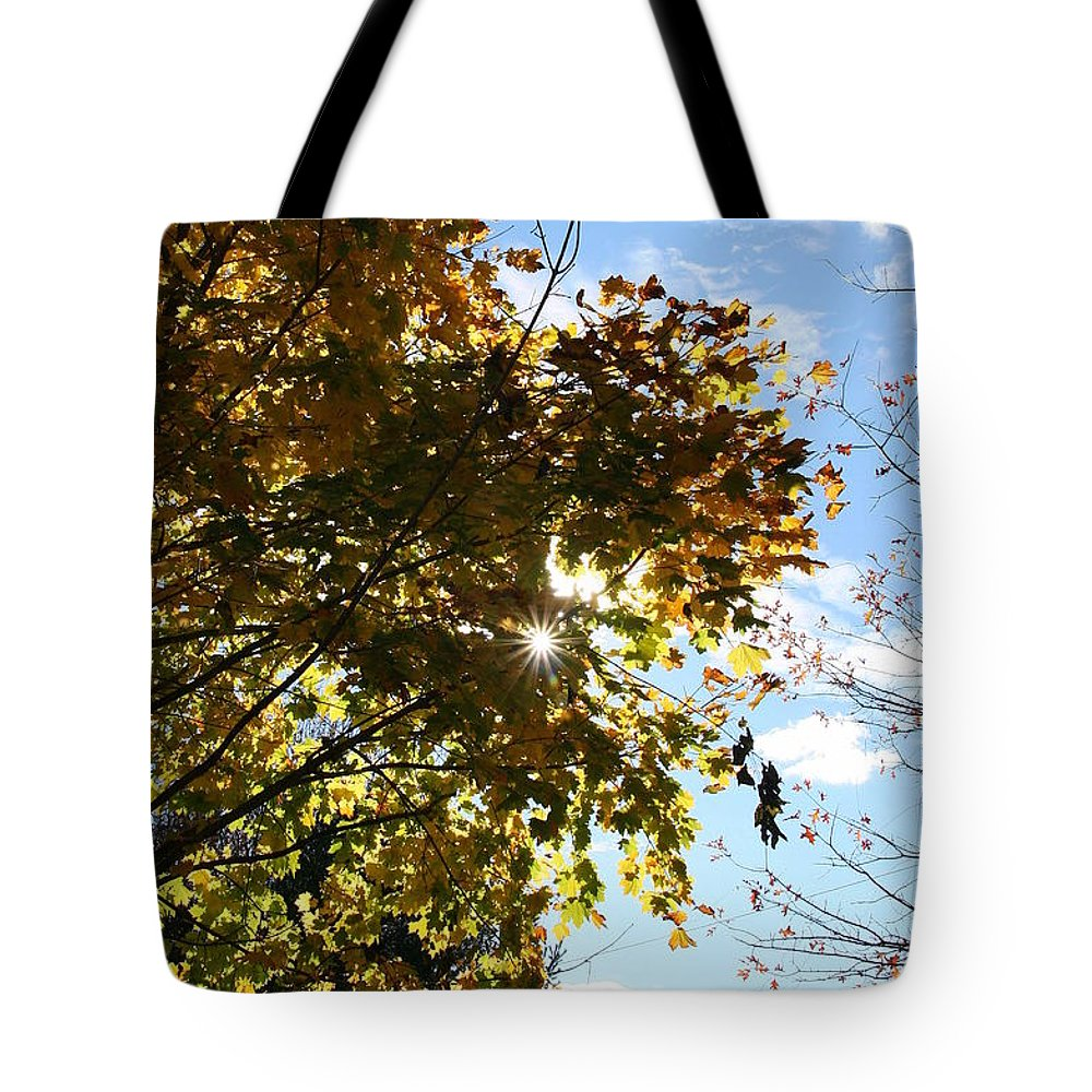 Sun Tote Bag featuring the photograph Autumn Sun by Neal Eslinger